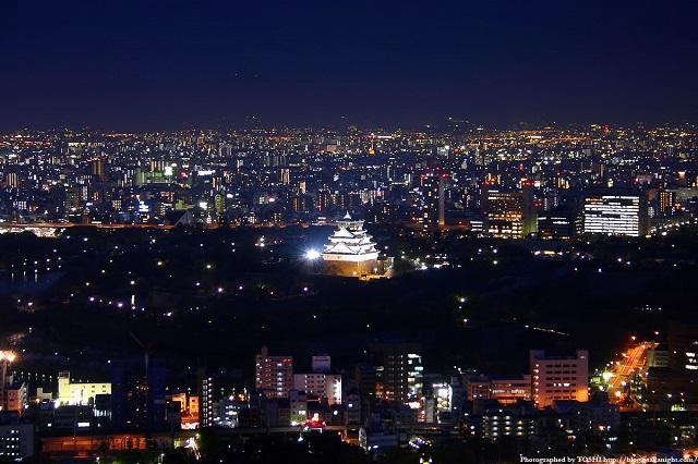大阪市内スカイクルーズ