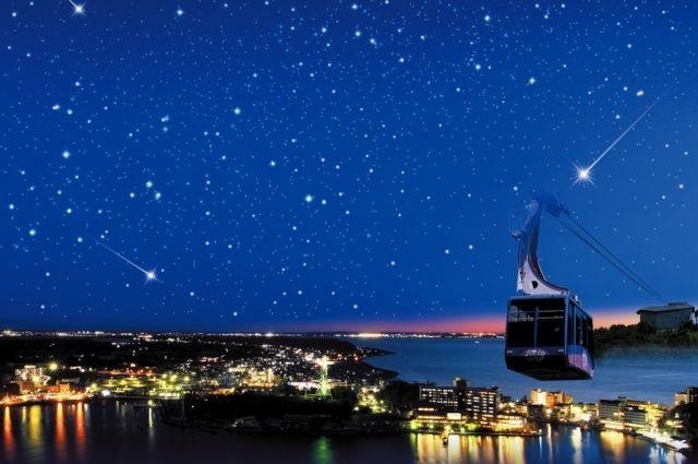 浜名湖夜空の空中散歩ツアー