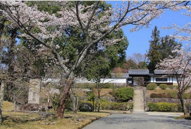 柳生芳徳禅寺