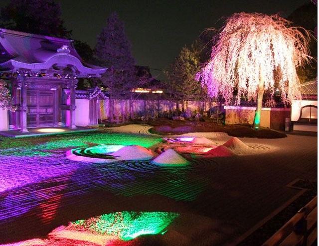 高台寺の夜間特別拝観