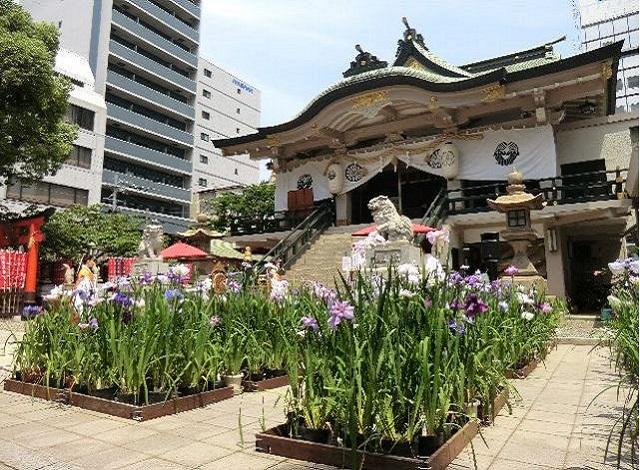 難波神社の菖蒲神事