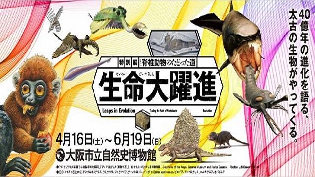 大阪市立自然史博物館 生命大躍進